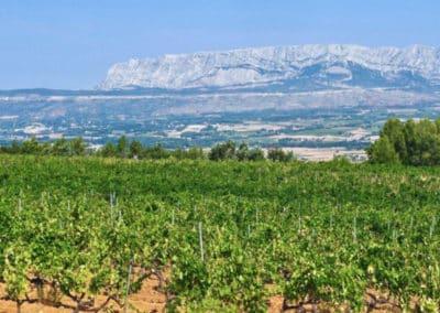 Provence Wine Tours - View of Sainte-Victoire Mountain far away