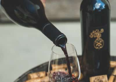 Provence Wine Tours - Red wine tasting, Château de Calavon