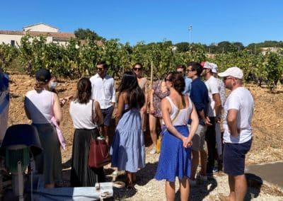 Provence Wine Tours - Group wine tour at Châteauneuf-du-Pape