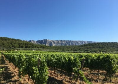 Provence Wine Tours - View from vineyard overlooking Sainte-Victoire mountain