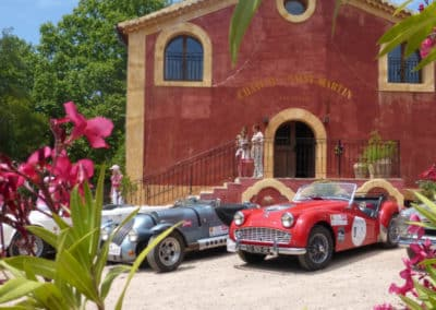vintage model cars at a vineyard