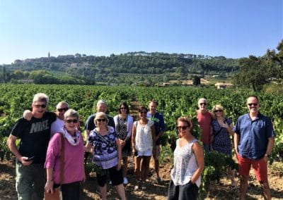 Provence Wine Tours - Happy group on a wine tour inside the vineyard