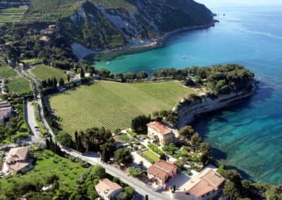 Provence Wine Tours - Cassis view on vineyard and sea